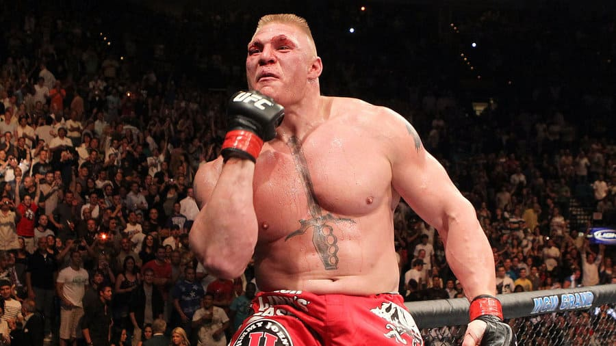 brock_lesnar_by_mma_fan