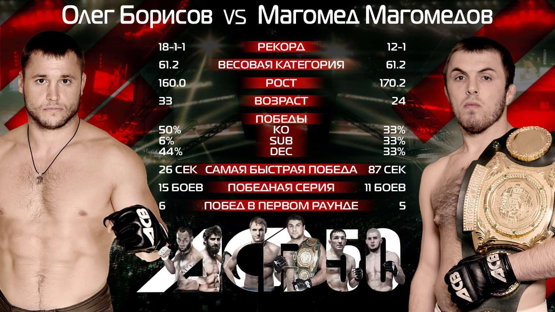 Магомедов Борисов статистика