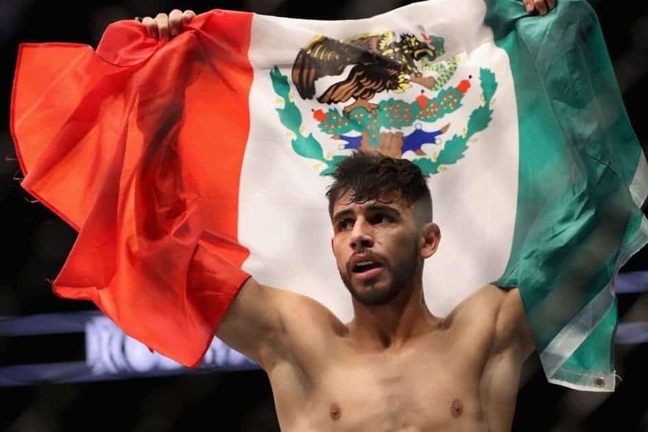 Яир Родригез прокомментировал победу Забита на UFC 228, вызвал его на бой