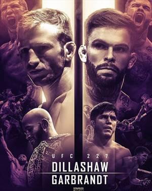 Результаты UFC 227
