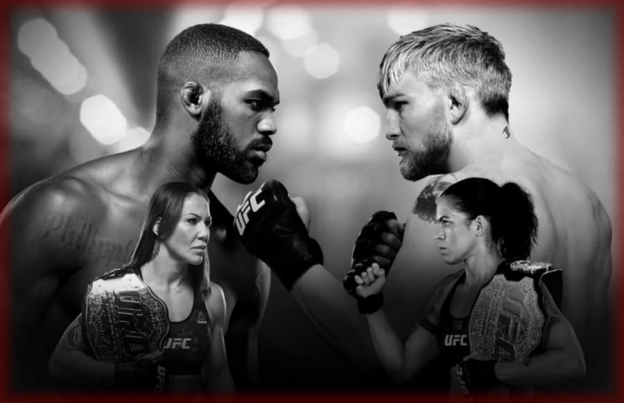 Результаты UFC 232