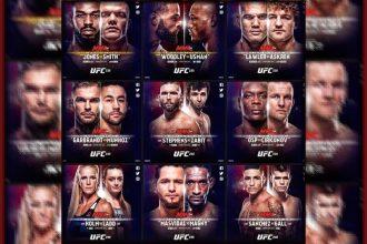 UFC 235 бои